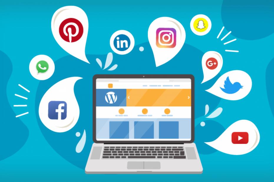 Redes sociais e sua importância